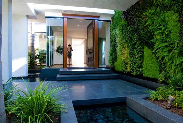 Murs vivants verts
