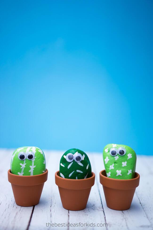 Tout le monde peut faire pousser des cactus rocheux